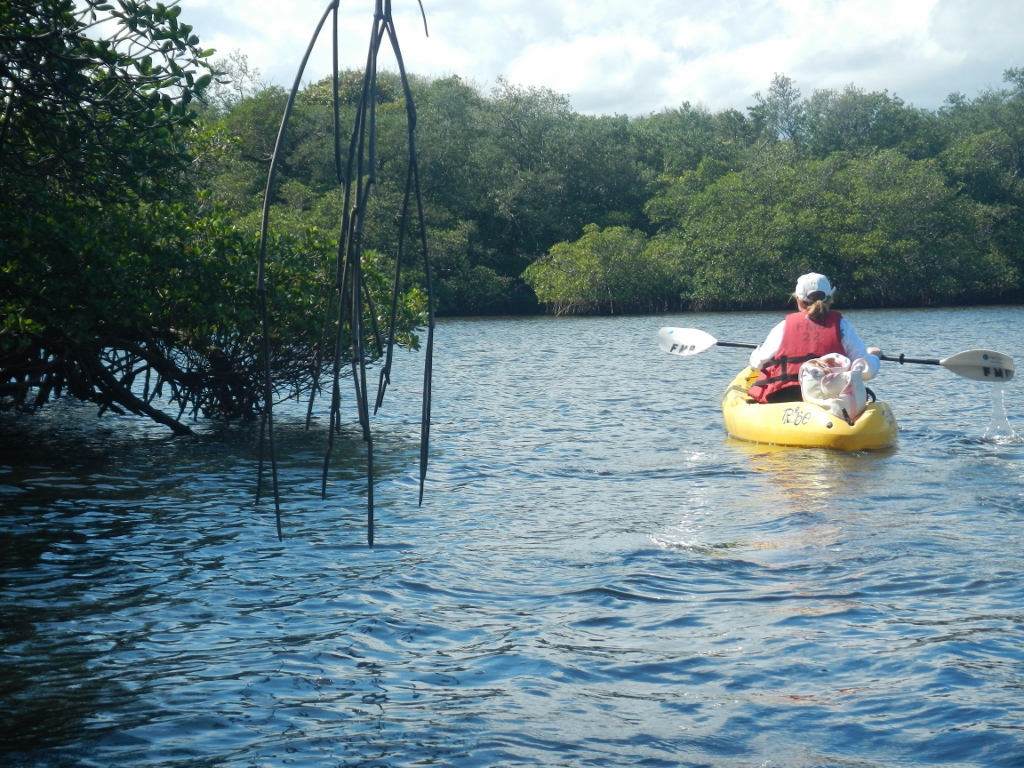 canoe trails in southern florida